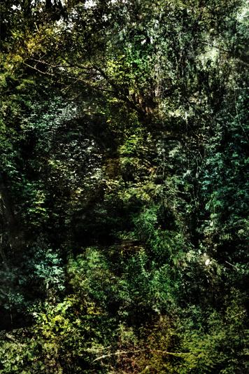 http://alainlens.com/files/gimgs/20_presencias0161.jpg