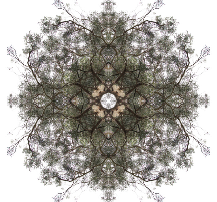 http://alainlens.com/files/gimgs/31_momentum0000512.jpg
