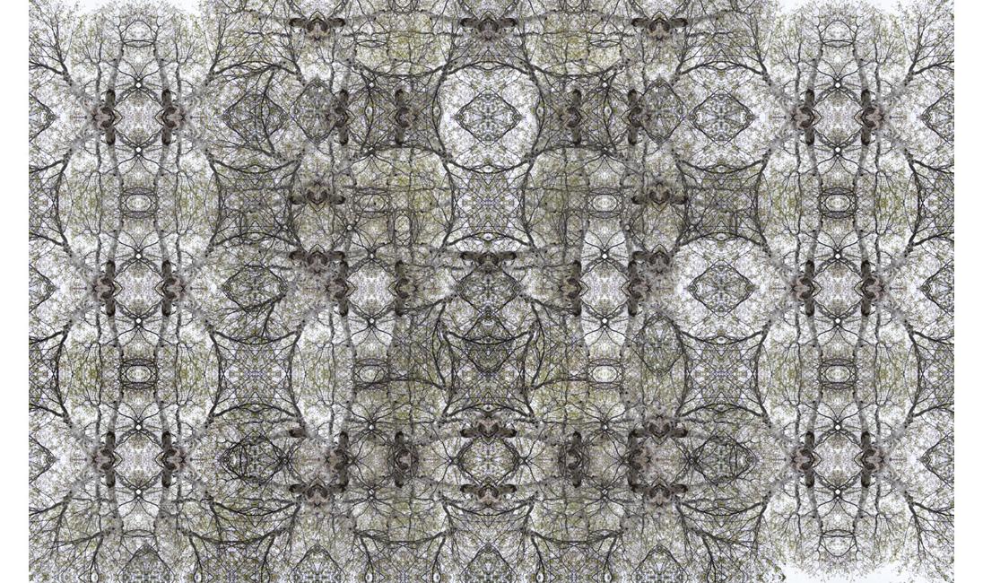 http://alainlens.com/files/gimgs/31_momentum00514.jpg