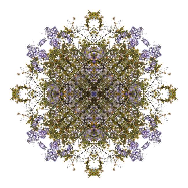 http://alainlens.com/files/gimgs/31_momentum0558.jpg