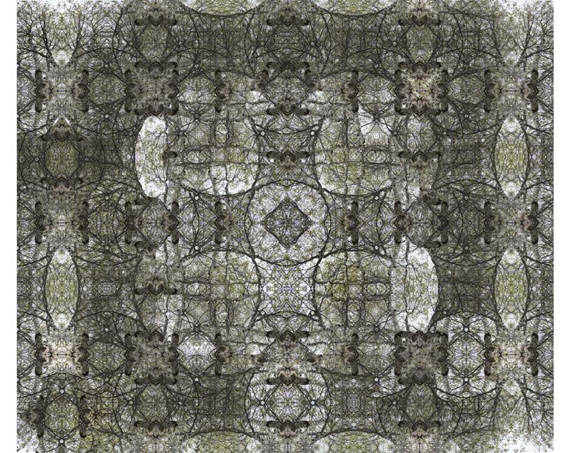 http://alainlens.com/files/gimgs/31_momentumtapis00514.jpg